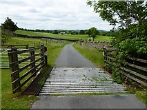 SD6382 : Cattle grid on the road to Dent by Philip Platt