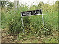TM0783 : Wood Lane sign by Adrian Cable