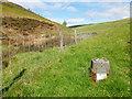NT3343 : Ordnance Survey benchmark, Glentress by Alan O'Dowd