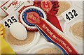 SJ7177 : Prize Eggs 5 by Anthony O'Neil