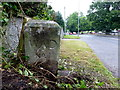 H4672 : WD No.1 boundary marker, Hospital Road, Omagh by Kenneth  Allen