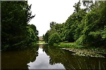 TL7835 : Hedingham Castle and Gardens: The lake, southern end by Michael Garlick
