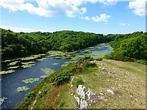 SR9794 : Lily ponds from vantage point on path to Bosherton by Raymond Knapman