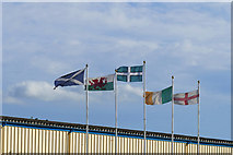 SX8672 : Flags, Newton Abbot racecourse by Alan Hunt