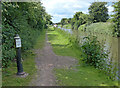 SK2222 : Towpath along the Trent & Mersey Canal by Mat Fascione