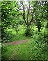 ST9819 : Shire Rack meets Longcroft Road by Derek Harper
