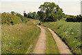 TF0036 : Long Hollow by Richard Croft