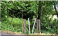 J1853 : Stile, Dromore - June 2015(3) by Albert Bridge