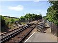 SZ6086 : Crossing near Brading Station by PAUL FARMER