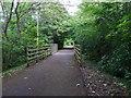 NO4429 : Pathway bridge over Quarry Road by Stanley Howe