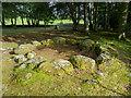 NH7544 : The Kerb Cairn, Clava Cairns by Julian Paren