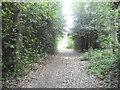 TQ2195 : Rowley Green Common by David Howard