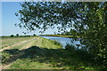 SE6418 : Knottingley and Goole Canal near West Cowick by Graham Hogg