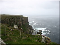 ND2076 : Cliffs at Dunnet Head by David Purchase