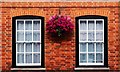 SU9677 : Hanging basket of flowers, Eton High Street by Julian Osley
