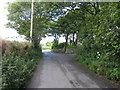 SW6838 : Loscombe Lane, Four Lanes near Redruth by Richard Rogerson
