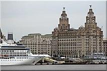 SJ3390 : Nautica and the Liver Building, Liverpool by El Pollock