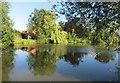 TM4262 : Pond at Leiston House Farm by Des Blenkinsopp