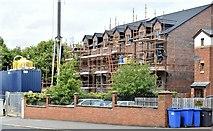J3674 : Nos 120-126 Upper Newtownards Road (July 2015) by Albert Bridge