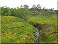NN2841 : Stream near Bridge of Orchy by Malc McDonald