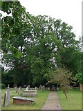 ST9383 : Holy Rood, Rodbourne: churchyard (d) by Basher Eyre