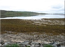 NC5758 : The Kyle of Tongue at low tide by David Purchase