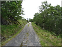 NC4653 : The Loch Hope road by David Purchase