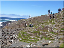 C9444 : Giant's Causeway by Michael Dibb
