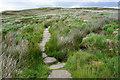 SD9734 : The Pennine Way climbing towards Dean Stones Edge by Bill Boaden