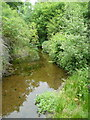 NZ9107 : Rigg Mill Beck from the footbridge by Humphrey Bolton