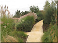 TQ3785 : Path through a garden in the Olympic Park by Stephen Craven