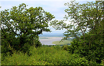 SD4577 : View from Arnside Knott by Chris Heaton