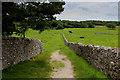 SD4576 : Footpath heading South towards Middlebarrow Plain by Chris Heaton