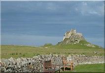 NU1341 : Lindisfarne Castle by Phil Breeze