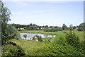 TM2863 : Framlingham Mere by Des Blenkinsopp