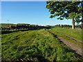 NO4004 : Manure and a farm track near Hatton by Richard Law