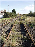 TQ2182 : Derelict sidings south of Willesden Junction by Mick Crawley