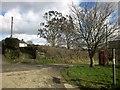 SX3677 : Village green, Rezare by Derek Harper
