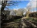SX3476 : Lane at Holly Grove by Derek Harper