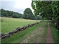 SK2379 : Derwent Valley Heritage Way by Stephen Burton