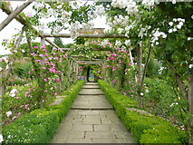 TQ1352 : Rose garden, Polesden Lacey by pam fray