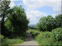 S1085 : Lane at Ballinakill Upper by Jonathan Thacker