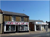 TL4196 : THE PET SHOP BOYES by Richard Humphrey