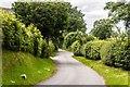 SJ8675 : Hocker Lane by Peter McDermott