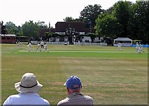 TQ0893 : Watching county cricket from square leg by John Sutton