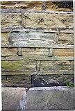 SE1338 : Benchmark on #7 Albert Terrace by Roger Templeman