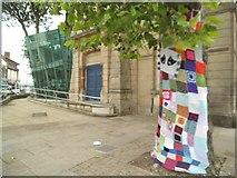 SO9596 : Bilston Tree by Gordon Griffiths