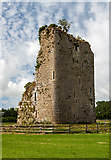S1133 : Castles of Munster: Ballydoyle, Tipperary (2) by Mike Searle