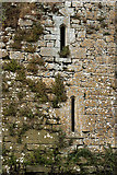 S1133 : Castles of Munster: Ballydoyle, Tipperary (6) by Mike Searle