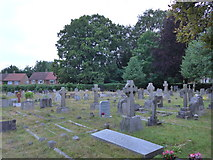 SU8363 : St John the Baptist, Crowthorne: churchyard (b) by Basher Eyre